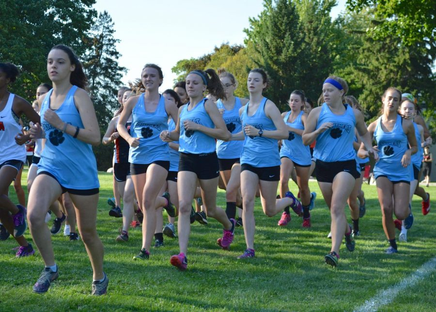 Long Strides For Regina's Cross Country Team