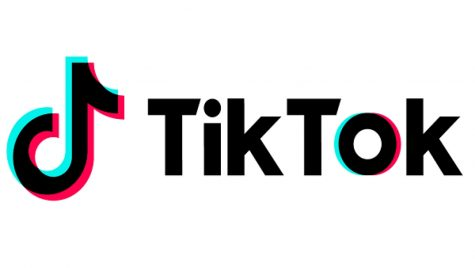 TikTok. What's All The Hype? Why Is There A House For It?
