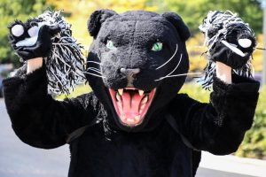 PAWS UP Week of 12/7