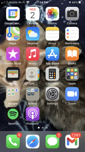 Spotlight: What's On Your Phone?